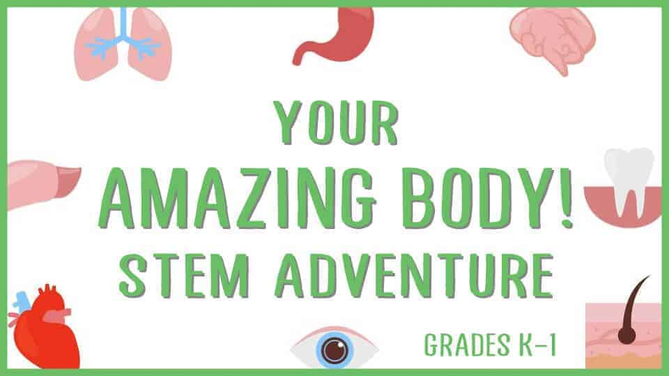 Your Amazing Body! STEM Adventure