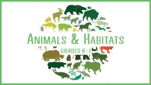 animals habitats STEM class kids